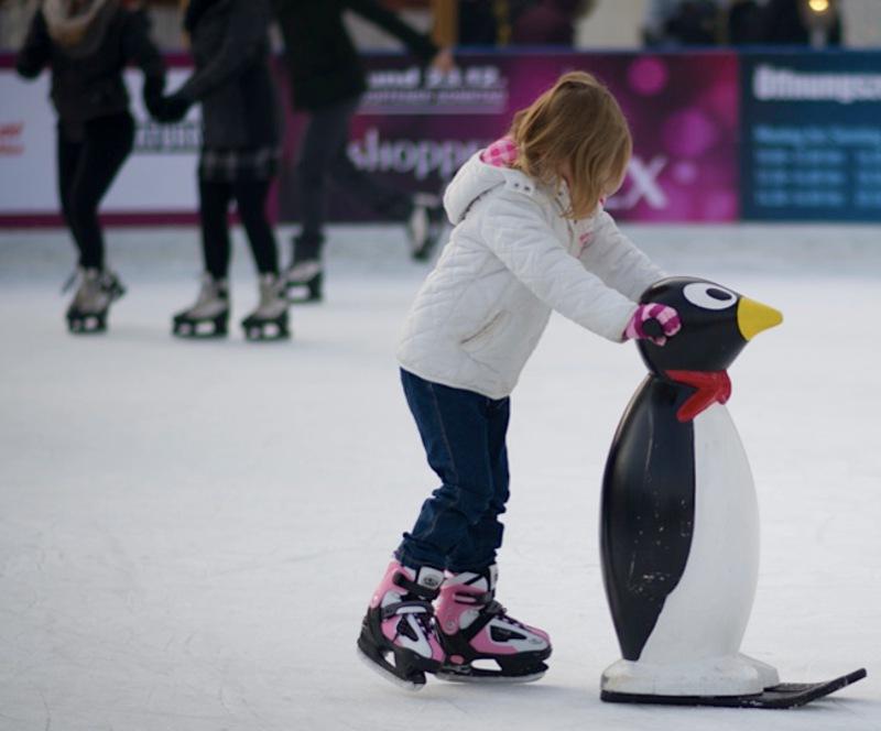 Pingüino Invernalia